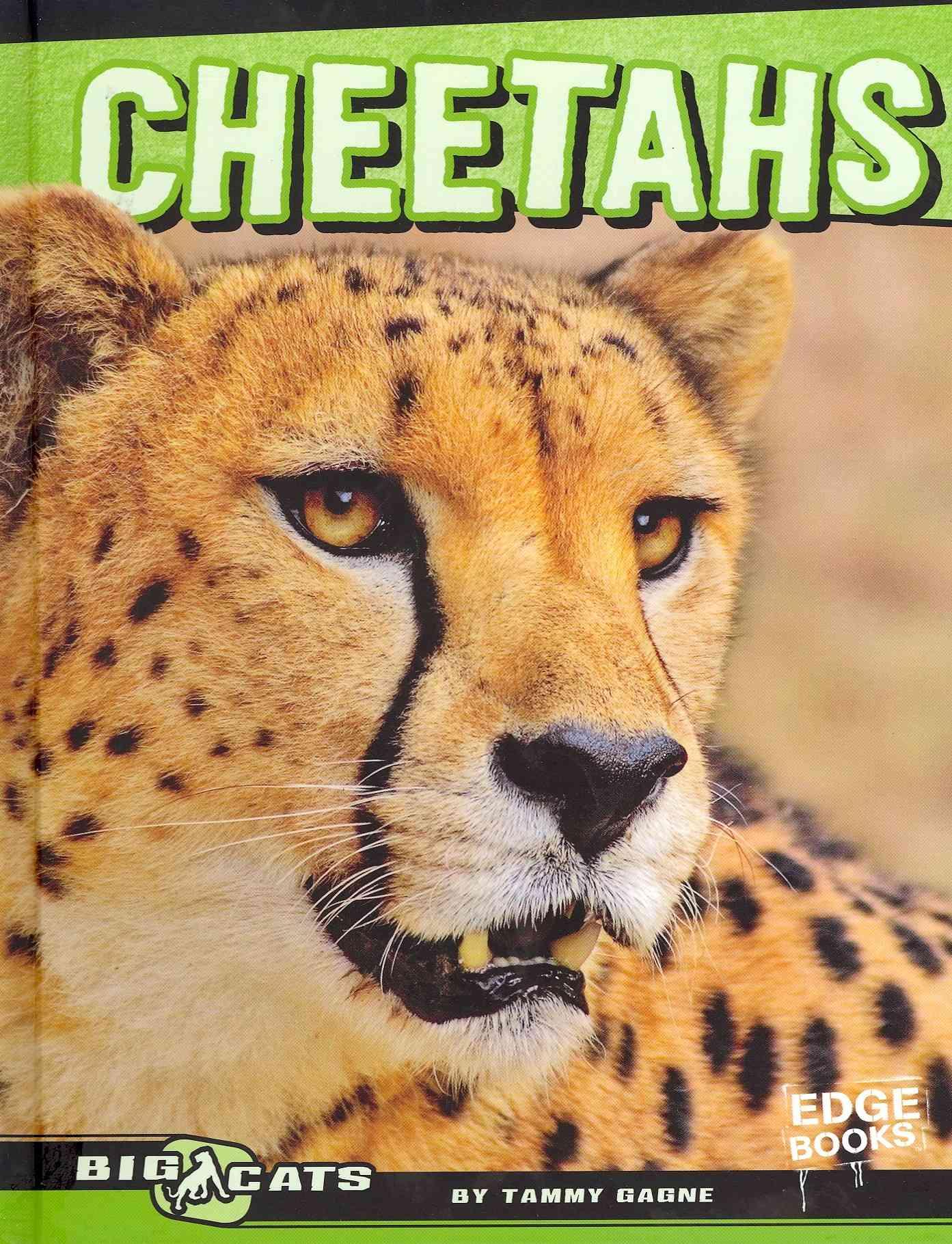Cheetahs By Gagne, Tammy